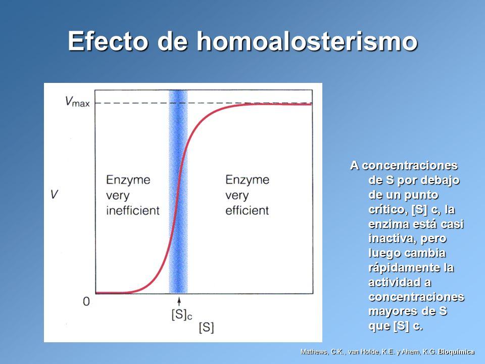 Efecto de homoalosterismo A concentraciones de S por debajo de un punto crítico, [S] c, la enzima está casi inactiva, pero luego cambia rápidamente la