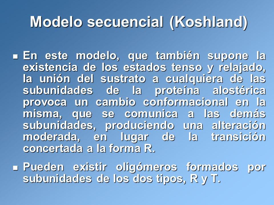 Modelo secuencial (Koshland) En este modelo, que también supone la existencia de los estados tenso y relajado, la unión del sustrato a cualquiera de l
