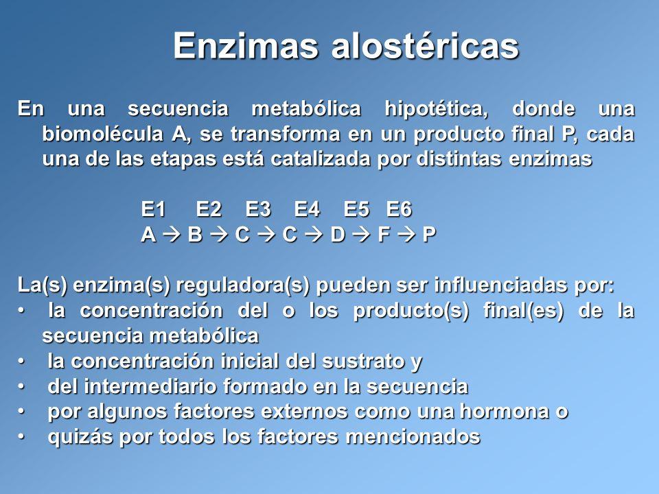 En una secuencia metabólica hipotética, donde una biomolécula A, se transforma en un producto final P, cada una de las etapas está catalizada por dist