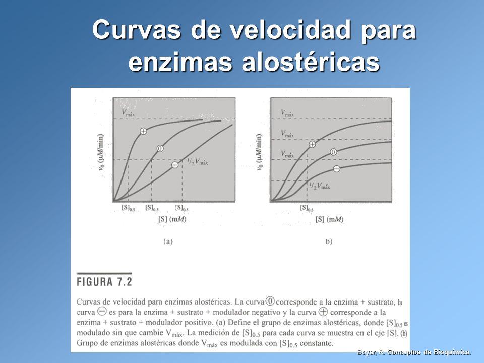 Curvas de velocidad para enzimas alostéricas Boyer, R. Conceptos de Bioquímica.