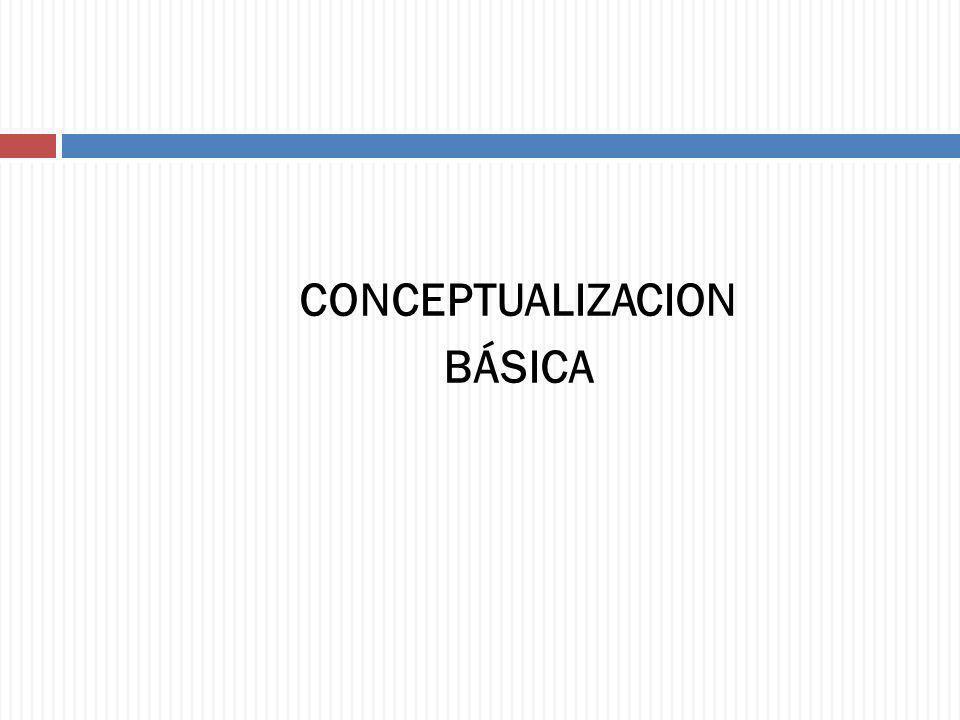 CONCEPTUALIZACION BÁSICA