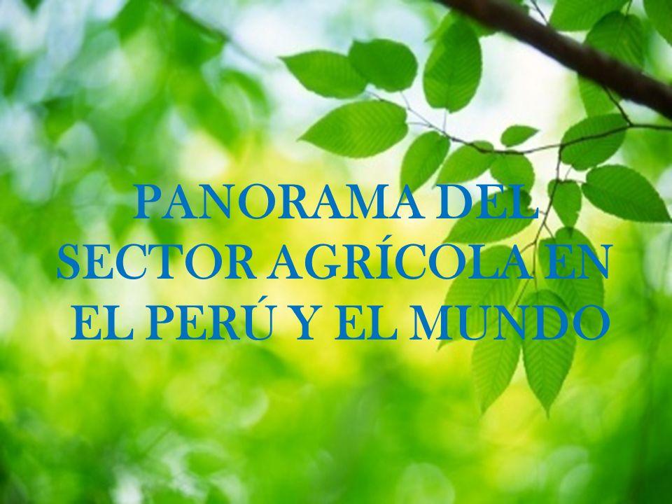 L/O/G/O PANORAMA DEL SECTOR AGRÍCOLA EN EL PERÚ Y EL MUNDO