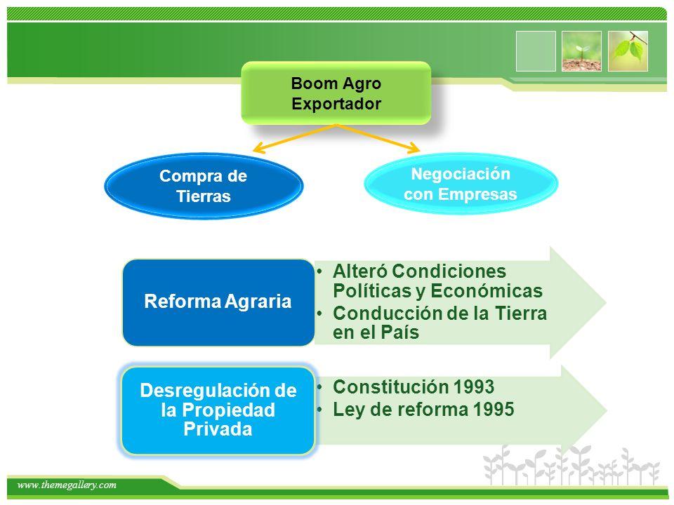www.themegallery.com Boom Agro Exportador Compra de Tierras Negociación con Empresas Alteró Condiciones Políticas y Económicas Conducción de la Tierra en el País Reforma Agraria Constitución 1993 Ley de reforma 1995 Desregulación de la Propiedad Privada