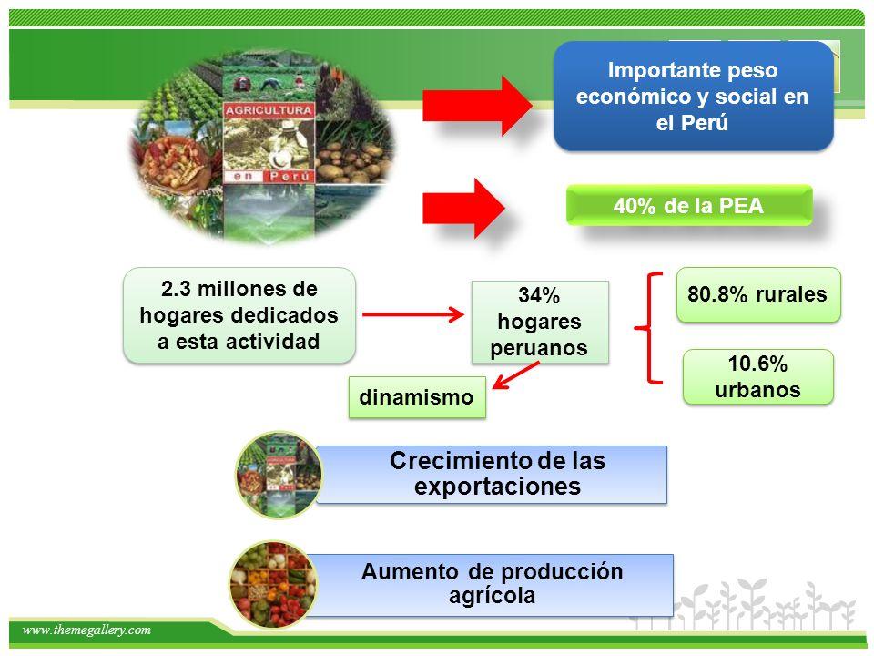 www.themegallery.com Importante peso económico y social en el Perú 2.3 millones de hogares dedicados a esta actividad 34% hogares peruanos 80.8% rurales 10.6% urbanos 40% de la PEA Crecimiento de las exportaciones Aumento de producción agrícola dinamismo