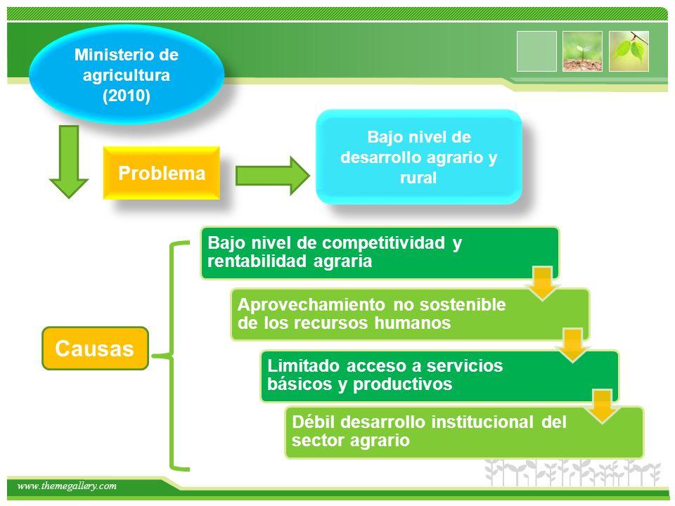 www.themegallery.com Ministerio de agricultura (2010) Bajo nivel de desarrollo agrario y rural Problema Bajo nivel de competitividad y rentabilidad ag