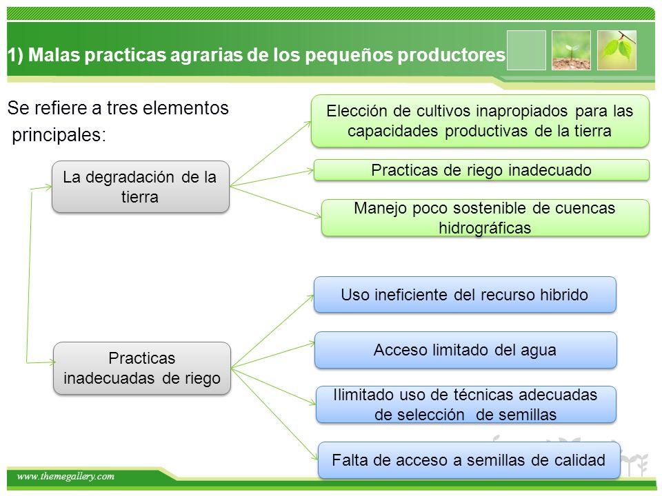 www.themegallery.com 1) Malas practicas agrarias de los pequeños productores Se refiere a tres elementos principales: La degradación de la tierra Elec