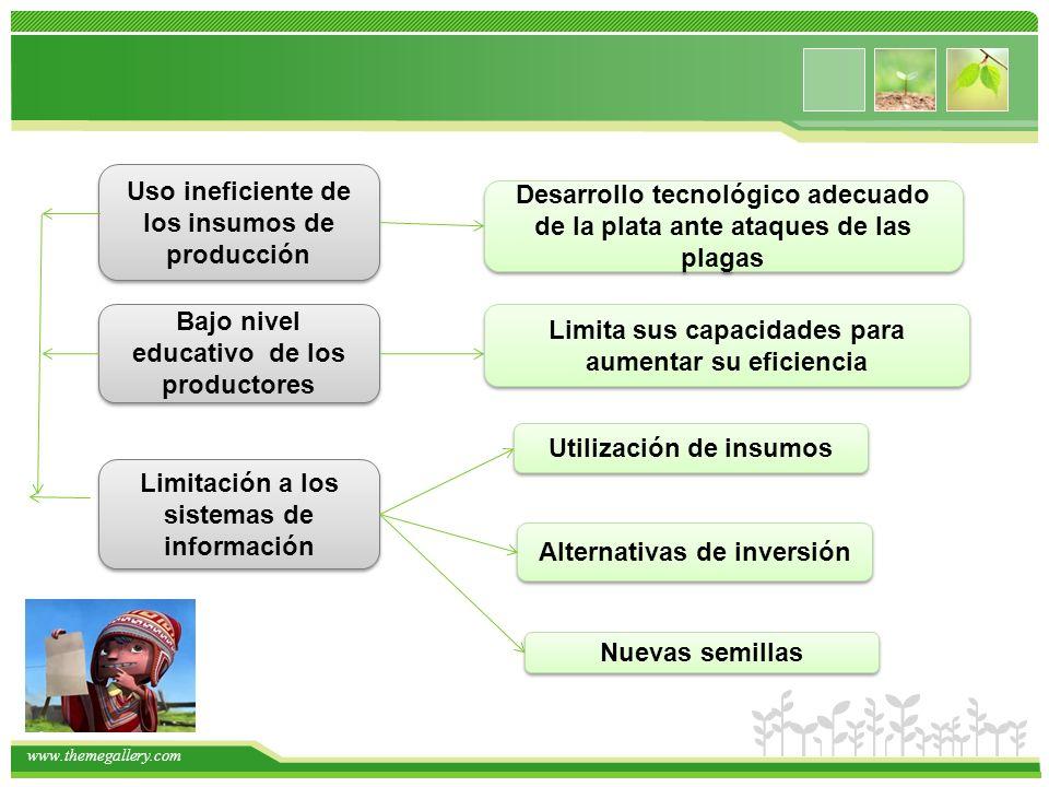 www.themegallery.com Uso ineficiente de los insumos de producción Uso ineficiente de los insumos de producción Desarrollo tecnológico adecuado de la p