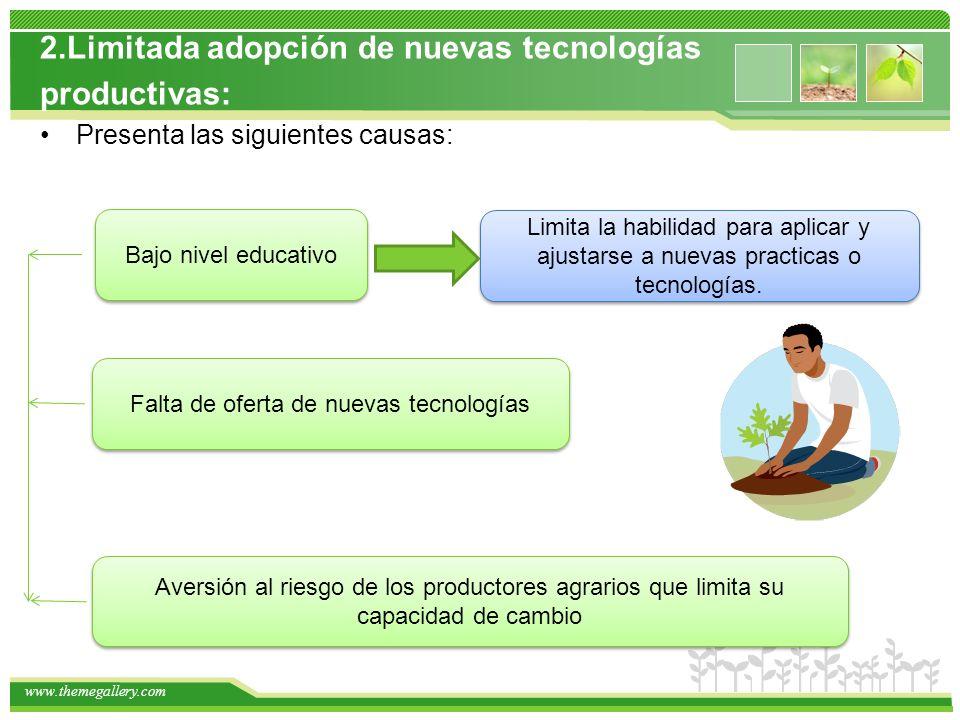 www.themegallery.com 2.Limitada adopción de nuevas tecnologías productivas: Presenta las siguientes causas: Bajo nivel educativo Limita la habilidad para aplicar y ajustarse a nuevas practicas o tecnologías.