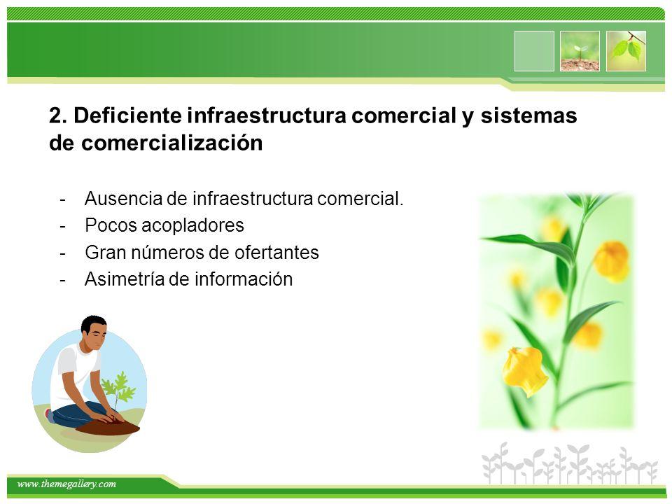 www.themegallery.com 2. Deficiente infraestructura comercial y sistemas de comercialización -Ausencia de infraestructura comercial. -Pocos acopladores