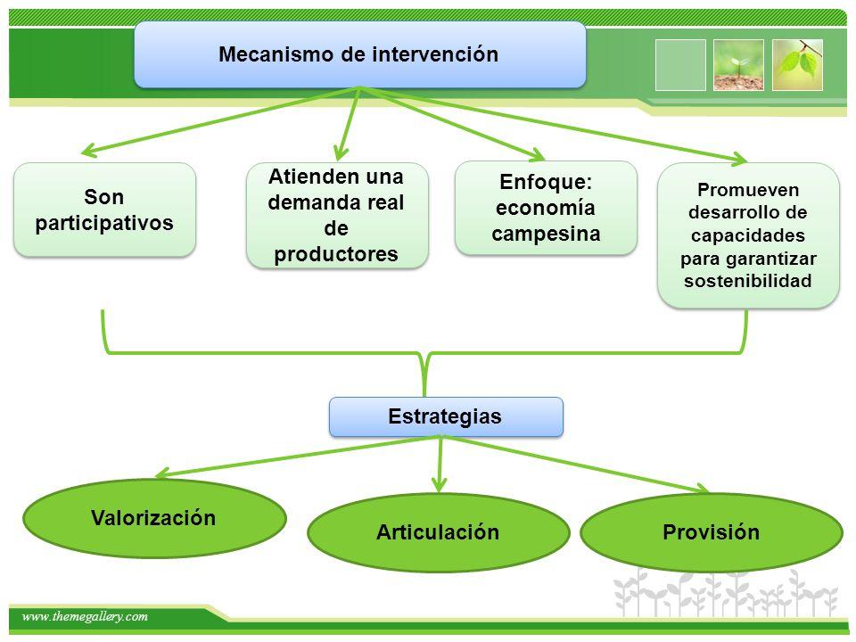 www.themegallery.com Mecanismo de intervención Son participativos Atienden una demanda real de productores Enfoque: economía campesina Promueven desarrollo de capacidades para garantizar sostenibilidad Estrategias Valorización ArticulaciónProvisión