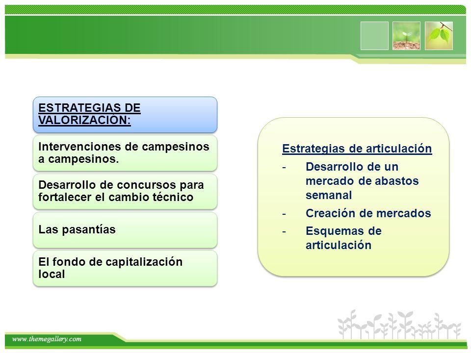 www.themegallery.com ESTRATEGIAS DE VALORIZACIÓN: Intervenciones de campesinos a campesinos. Desarrollo de concursos para fortalecer el cambio técnico