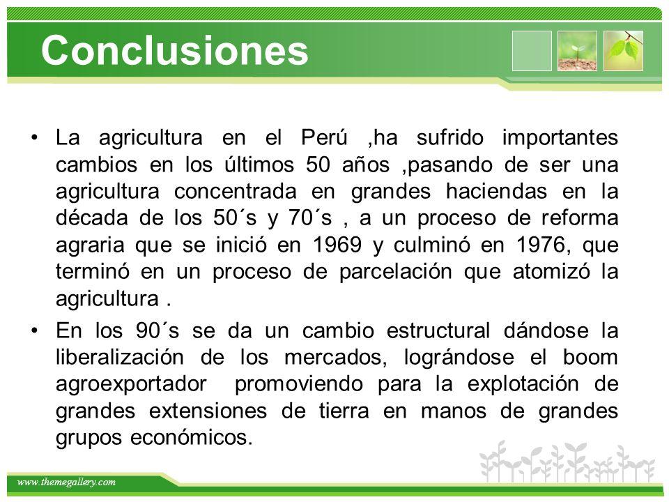 www.themegallery.com La agricultura en el Perú,ha sufrido importantes cambios en los últimos 50 años,pasando de ser una agricultura concentrada en grandes haciendas en la década de los 50´s y 70´s, a un proceso de reforma agraria que se inició en 1969 y culminó en 1976, que terminó en un proceso de parcelación que atomizó la agricultura.