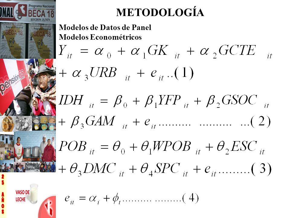 METODOLOGÍA Modelos de Datos de Panel Modelos Econométricos