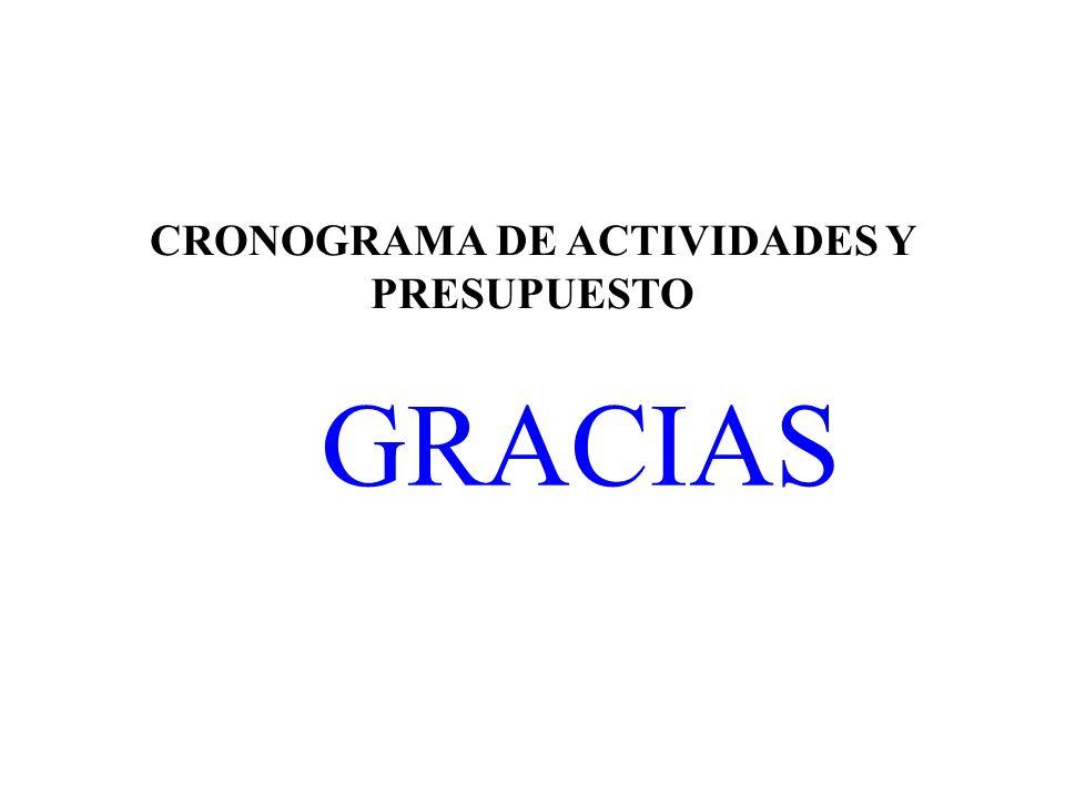 CRONOGRAMA DE ACTIVIDADES Y PRESUPUESTO GRACIAS
