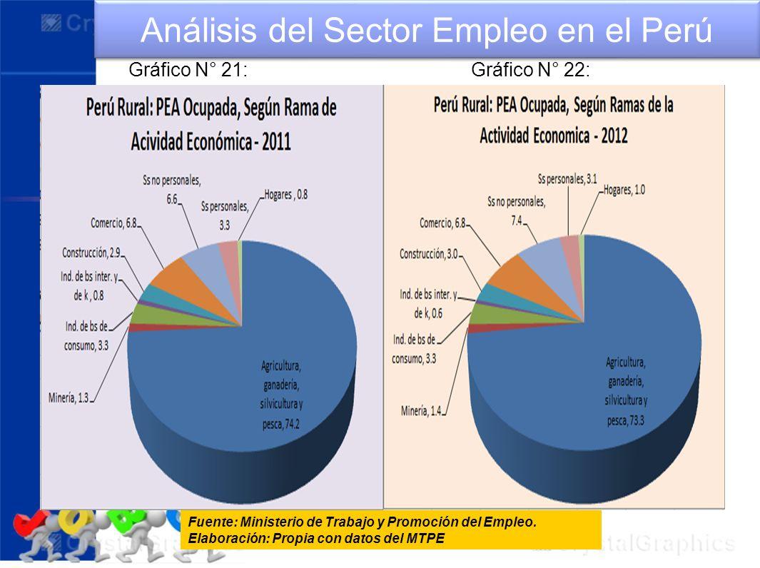 Análisis del Sector Empleo en el Perú Fuente: Ministerio de Trabajo y Promoción del Empleo. Elaboración: Propia con datos del MTPE Gráfico N° 21:Gráfi