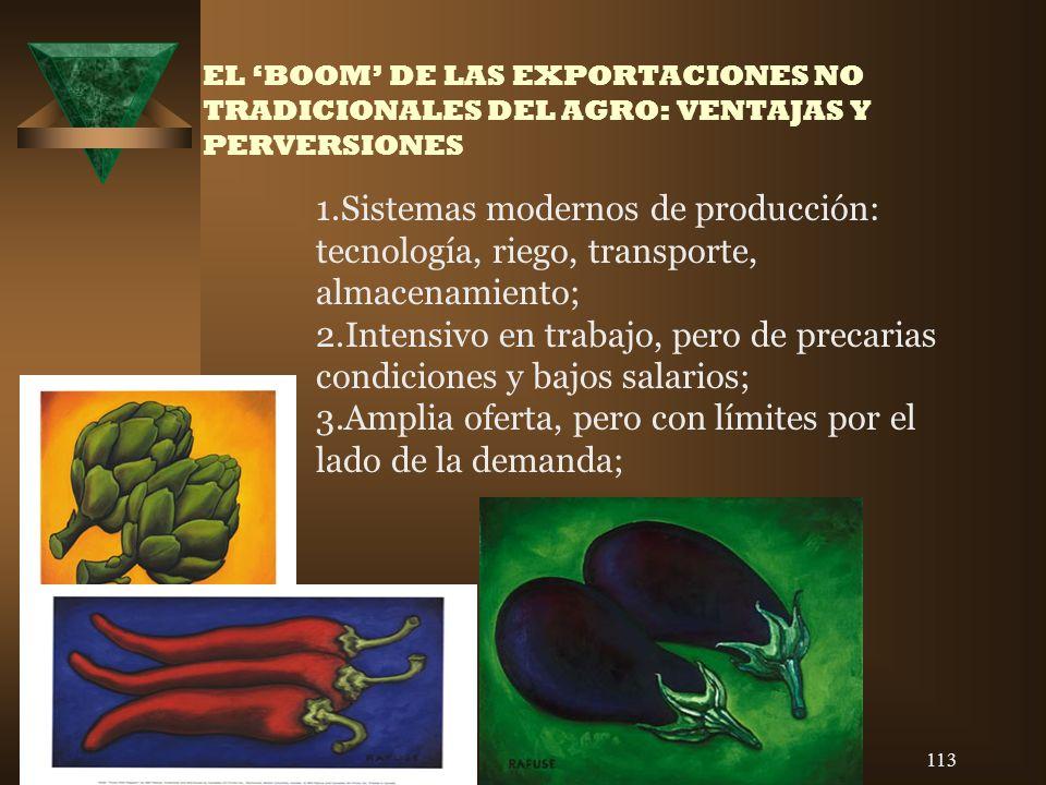113 EL BOOM DE LAS EXPORTACIONES NO TRADICIONALES DEL AGRO: VENTAJAS Y PERVERSIONES 1.Sistemas modernos de producción: tecnología, riego, transporte,