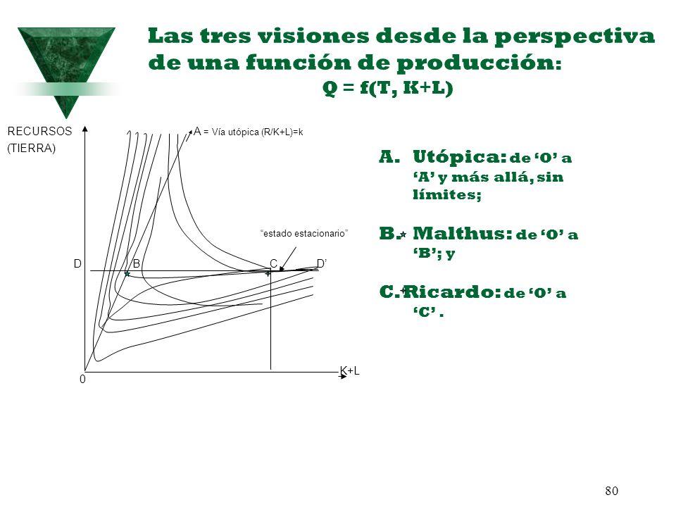 80 Las tres visiones desde la perspectiva de una función de producción : Q = f(T, K+L) K+L RECURSOS A = Vía utópica (R/K+L)=k (TIERRA) estado estacion