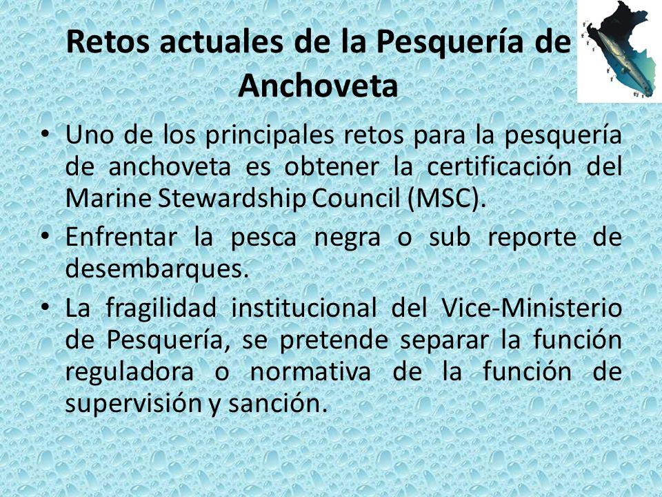 Retos actuales de la Pesquería de Anchoveta Uno de los principales retos para la pesquería de anchoveta es obtener la certificación del Marine Stewardship Council (MSC).