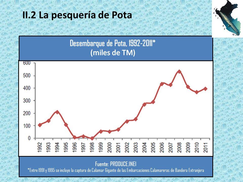 Fuente: PRODUCE,INEI *Entre 1991 y 1995 se incluye la captura de Calamar Gigante de las Embarcaciones Calamareras de Bandera Extranjera II.2 La pesquería de Pota