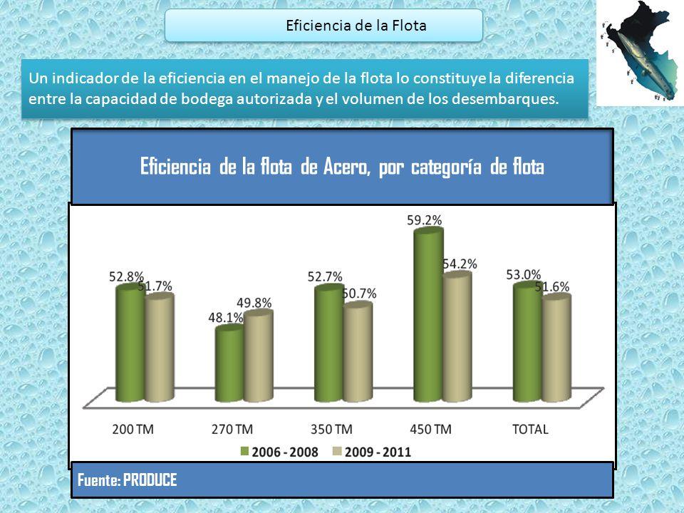 Eficiencia de la Flota Un indicador de la eficiencia en el manejo de la flota lo constituye la diferencia entre la capacidad de bodega autorizada y el volumen de los desembarques.