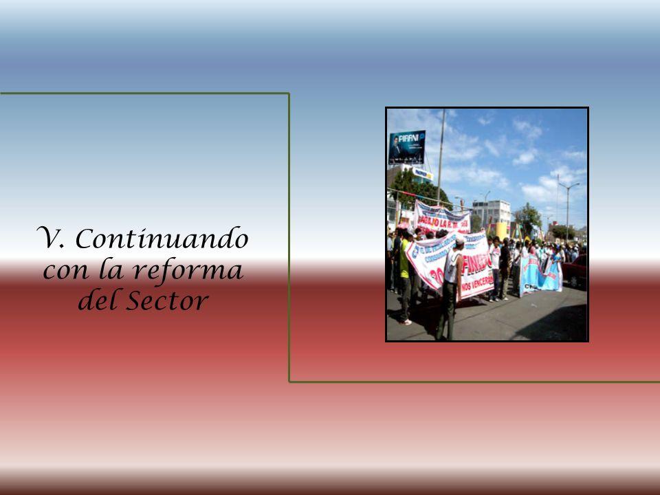 V. Continuando con la reforma del Sector