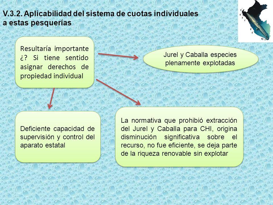 V.3.2.Aplicabilidad del sistema de cuotas individuales a estas pesquerías Resultaría importante ¿.