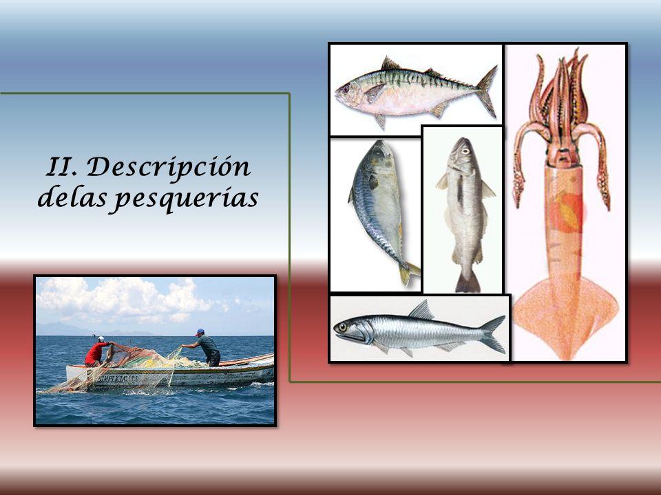 II. Descripción delas pesquerías