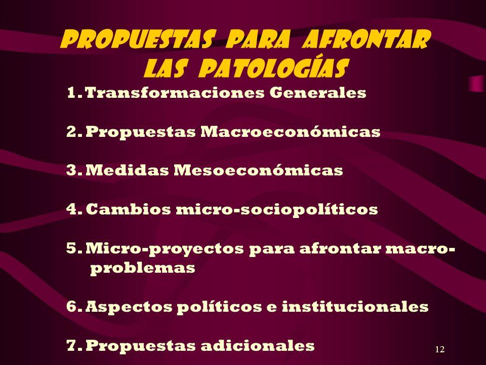 12 PROPUESTAS PARA AFRONTAR LAS PATOLOGÍAS 1. Transformaciones Generales 2. Propuestas Macroeconómicas 3. Medidas Mesoeconómicas 4. Cambios micro-soci