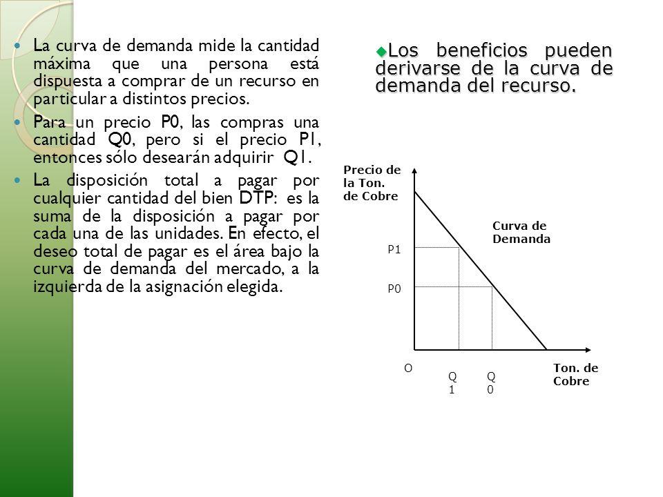 La curva de demanda mide la cantidad máxima que una persona está dispuesta a comprar de un recurso en particular a distintos precios. Para un precio P