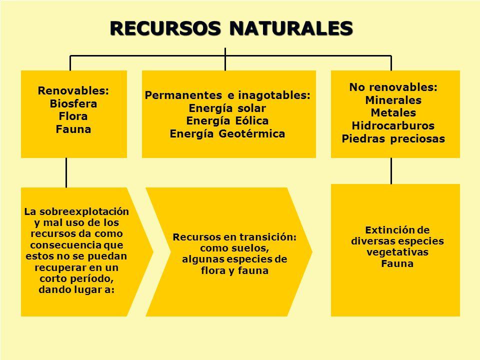 Renovables: Biosfera Flora Fauna Permanentes e inagotables: Energía solar Energía Eólica Energía Geotérmica RECURSOS NATURALES No renovables: Minerale