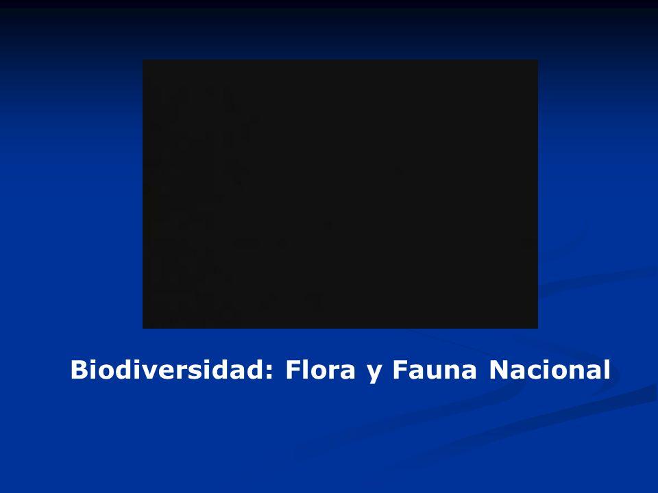 Biodiversidad: Flora y Fauna Nacional