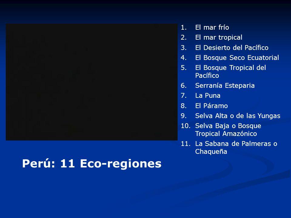 Perú: 11 Eco-regiones 1.El mar frío 2.El mar tropical 3.El Desierto del Pacífico 4.El Bosque Seco Ecuatorial 5.El Bosque Tropical del Pacífico 6.Serra