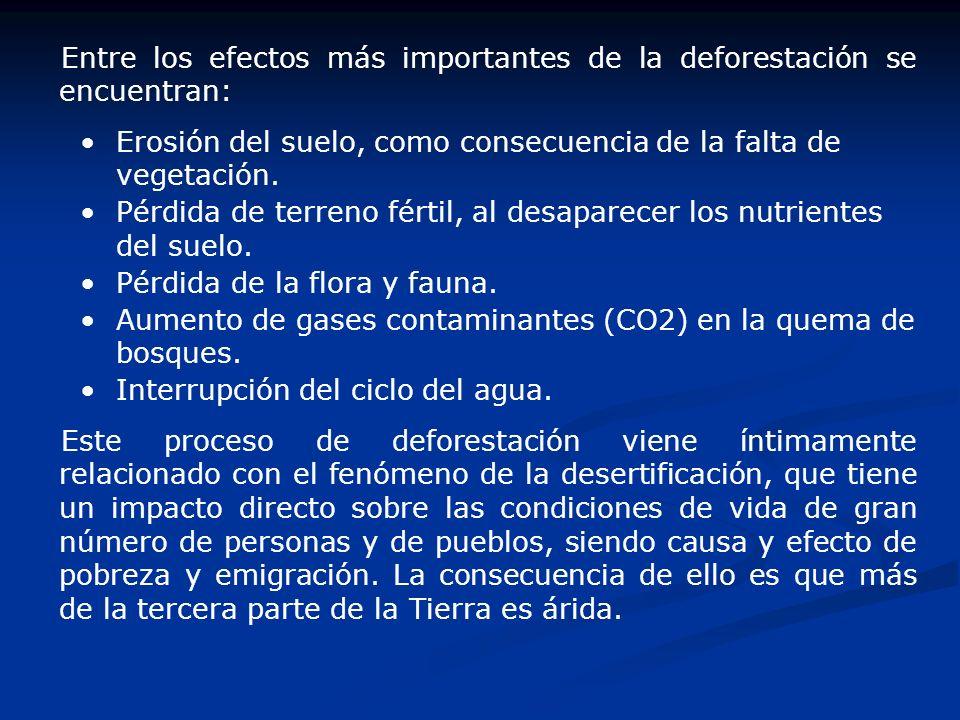 Entre los efectos más importantes de la deforestación se encuentran: Erosión del suelo, como consecuencia de la falta de vegetación. Pérdida de terren