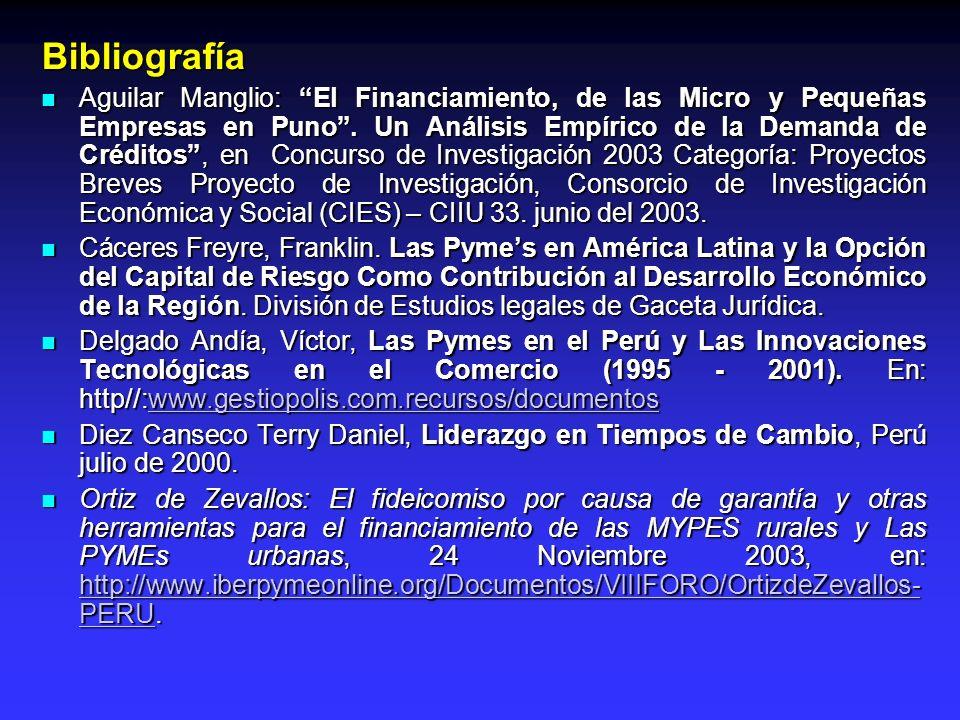 Bibliografía Aguilar Manglio: El Financiamiento, de las Micro y Pequeñas Empresas en Puno. Un Análisis Empírico de la Demanda de Créditos, en Concurso