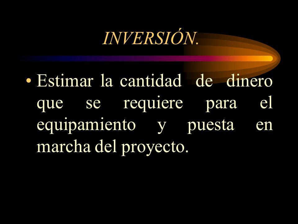 CAPÍTULO II INVERSIÓN Y FINANCIAMIENTO