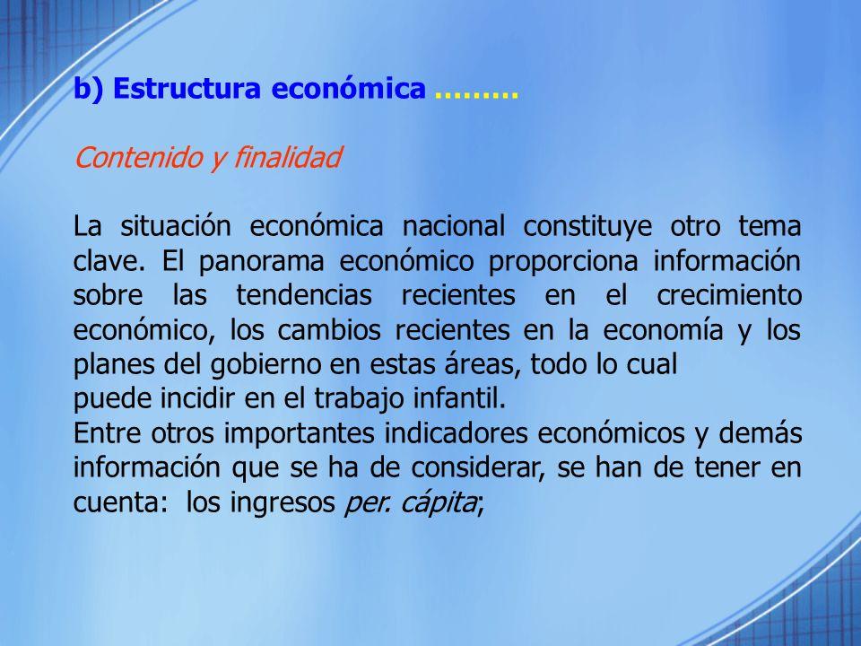 b) Estructura económica ……… Contenido y finalidad La situación económica nacional constituye otro tema clave. El panorama económico proporciona inform