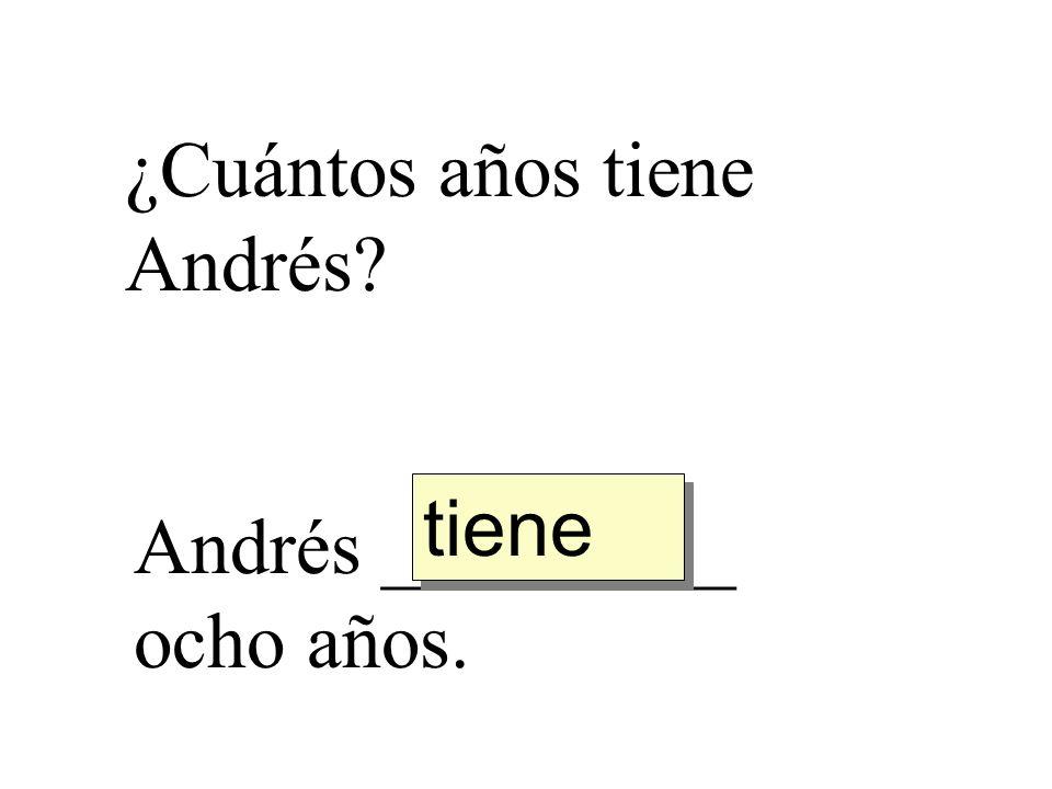 ¿Cuántos años tiene Andrés? Andrés _________ ocho años. tiene