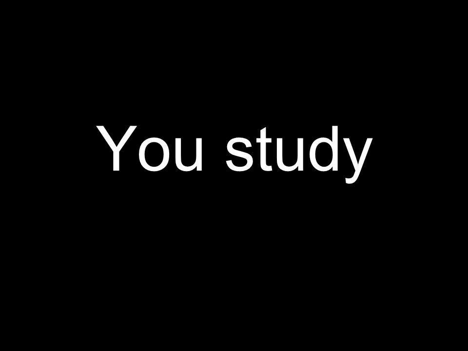 You study