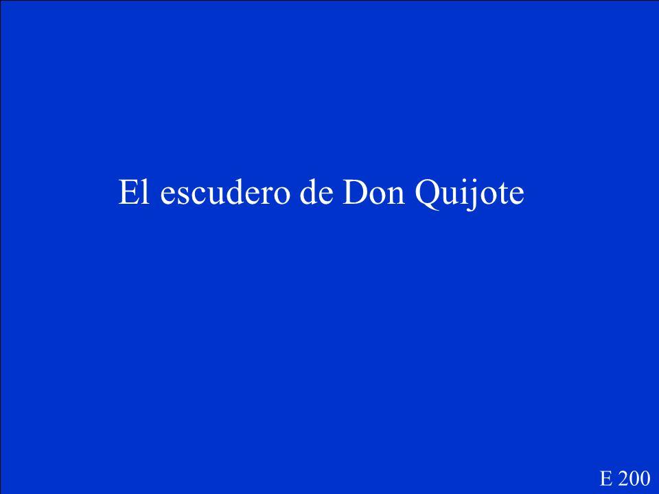 Dulcinea E 100