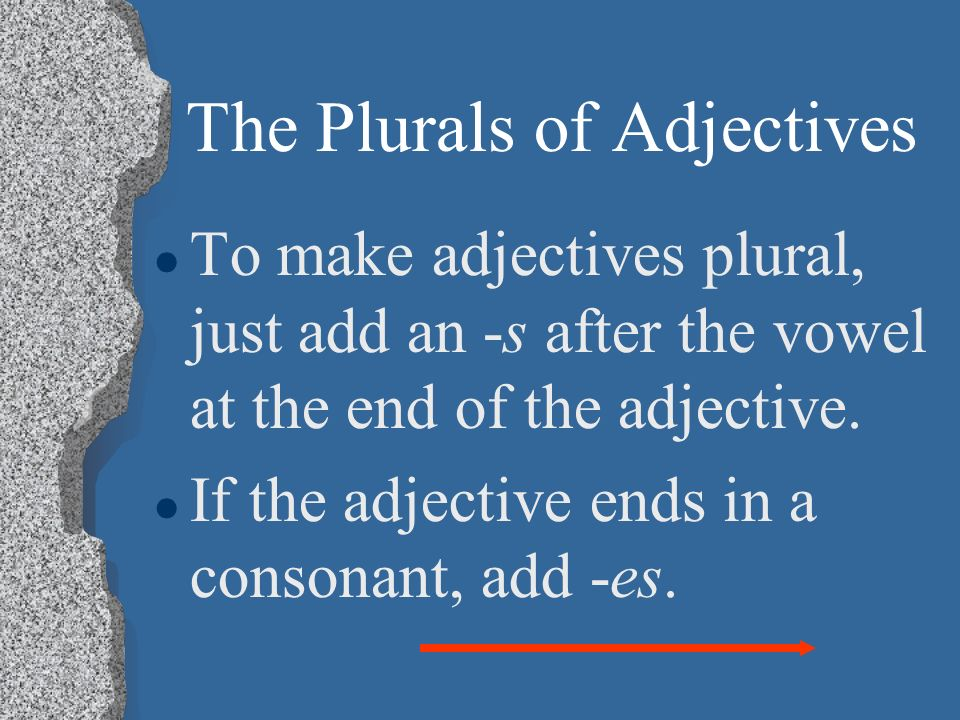 The Plurals of Adjectives l Just as adjectives agree with a noun depending on whether its masculine or feminine, they also agree according to whether