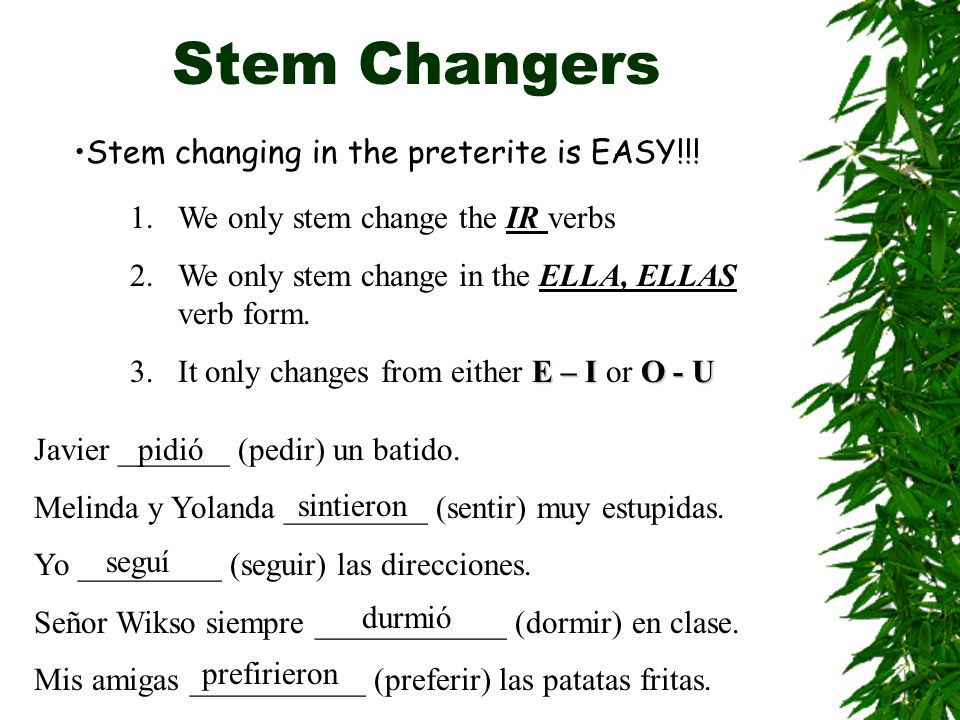 Stem Changers Stem changing in the preterite is EASY!!.