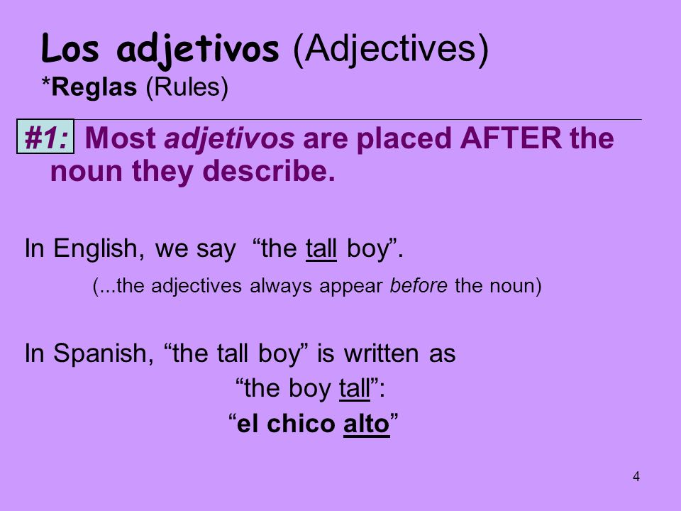 5 Los adjetivos (Adjectives) *Reglas (Rules) #2: Adjetivos must agree in NUMBER and GENDER with the noun they describe.