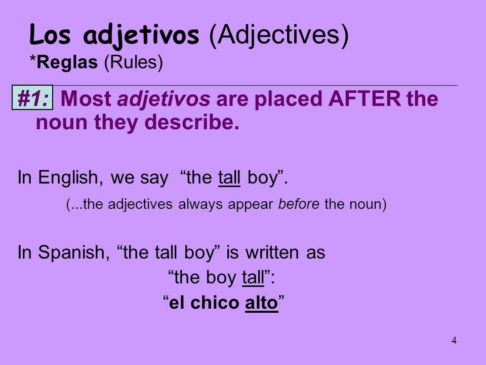 45 Los adjetivos y el verbo SER Write the correct form of SER for the following subjects: 1.Rosa- 2.Gabriela y Marcos- 3.La doctora Ramos- 4.Yo- 5.Ellas- 6.Los profesores- 7.Las mujeres-
