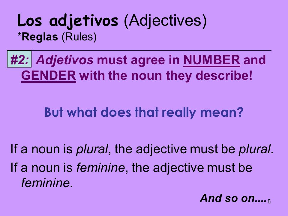 5 Los adjetivos (Adjectives) *Reglas (Rules) #2: Adjetivos must agree in NUMBER and GENDER with the noun they describe! But what does that really mean