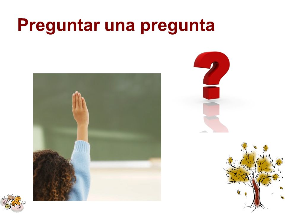 Preguntar una pregunta