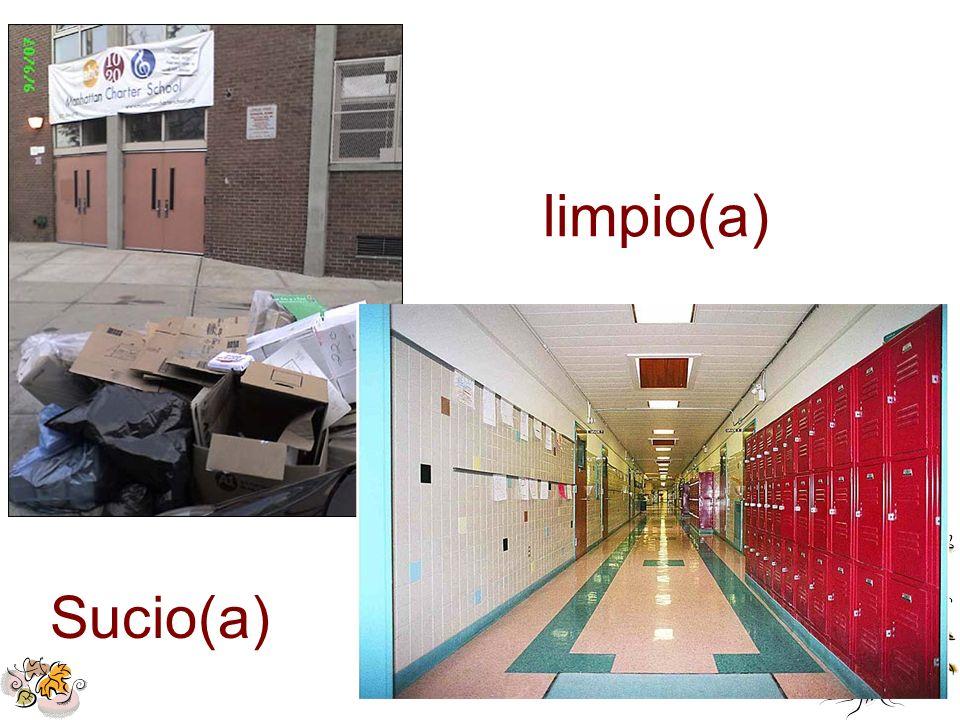 limpio(a) Sucio(a)