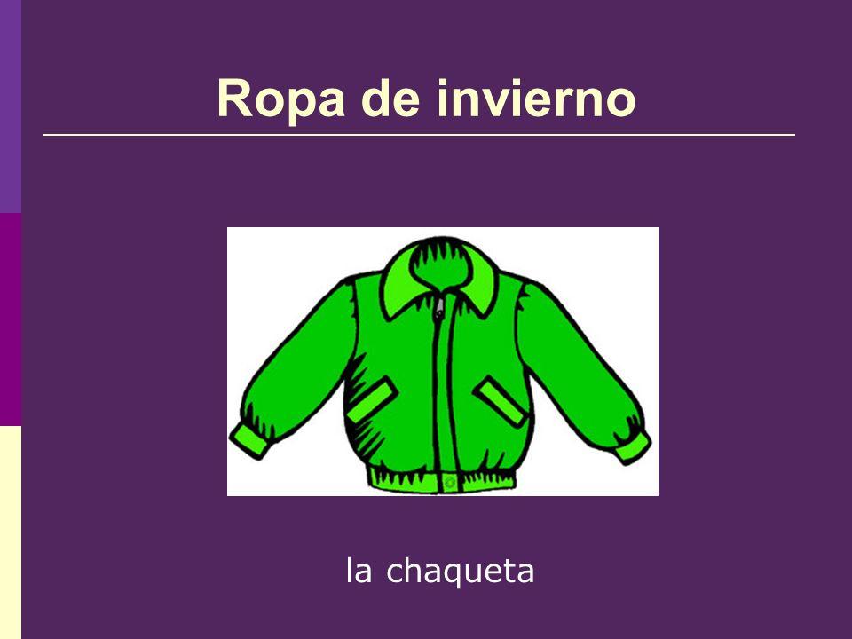 Ropa de invierno la chaqueta