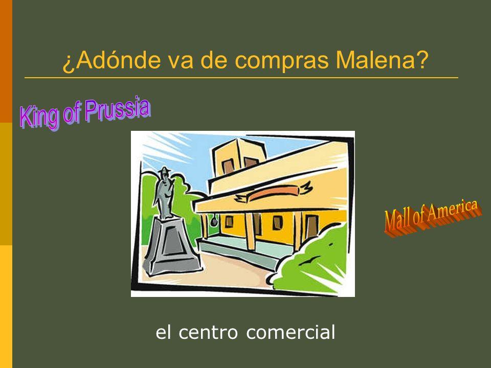 ¿Adónde va de compras Malena? la tienda