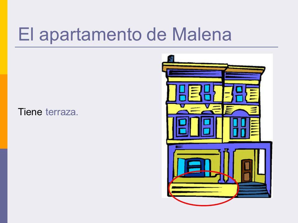 El apartamento de Malena Tiene terraza.