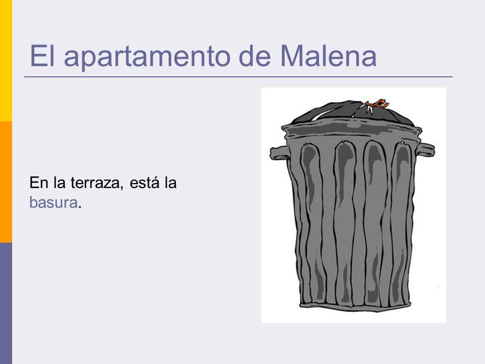 El apartamento de Malena En la terraza, está la basura.